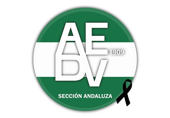 Marcelo Arce Aviño