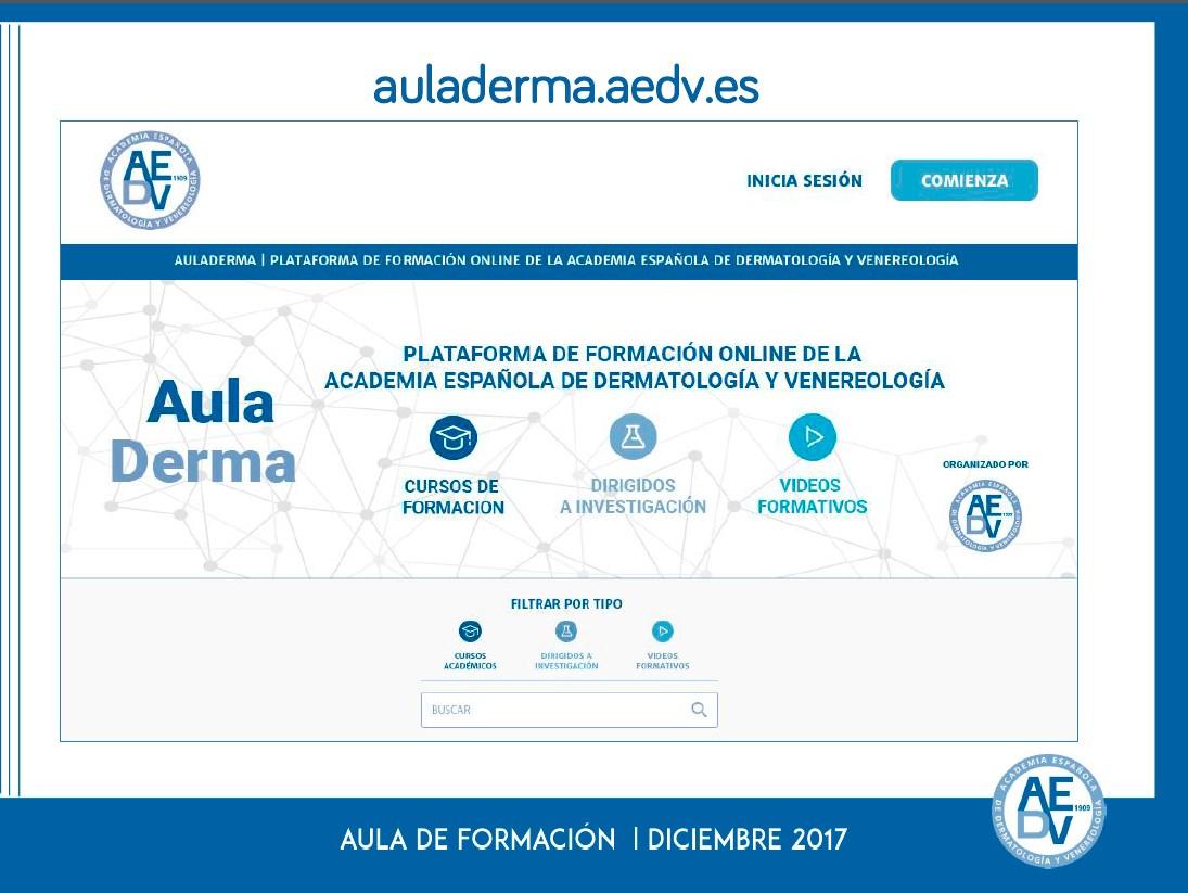 Informe Anual Auladerma 2017
